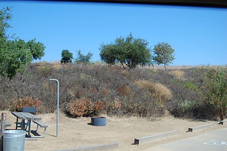 55370-Chino Hills State Park campsite.jpg